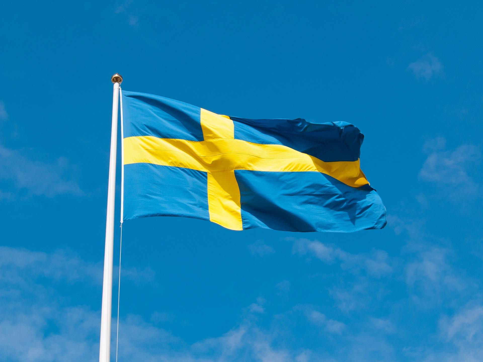 Ruotsin tehokurssi 30 h