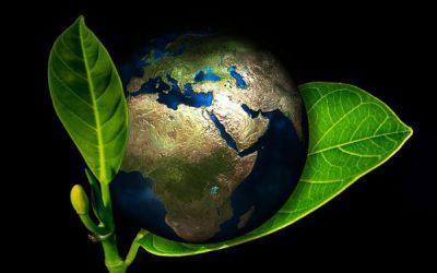 Maapallon aluemaantiede 5 op