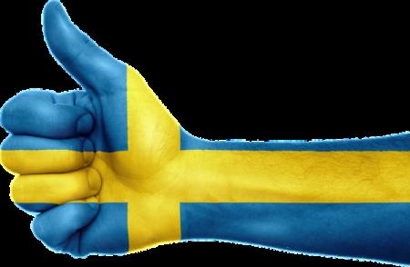 Ruotsin kielen valmentava kurssi, 2 op