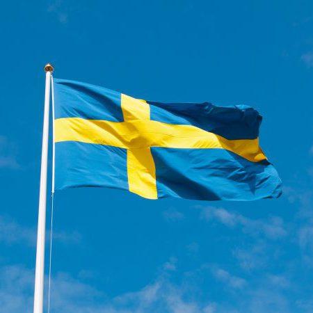 Ruotsin abikurssi 25 h