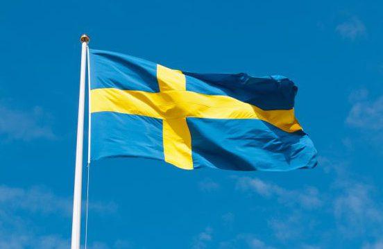 Ruotsin abikurssi 10 h -verkkokurssi